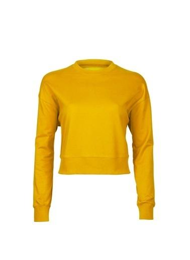 Bad Bear Sweatshirt Hardal